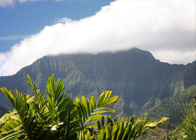 10% off available 2015! Hanalei - Spacious with Amazing Mountain Views & A/C! - Image 1 - Hanalei - rentals