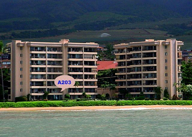 A203 Location - A203 Hololani Oceanfront  Resort - Lahaina - rentals