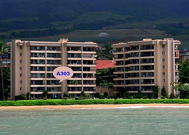 A303 - A303 Hololani Oceanfront Resort - Lahaina - rentals