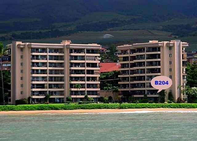 B204 Location - B204 Hololani Oceanfront Resort - Lahaina - rentals