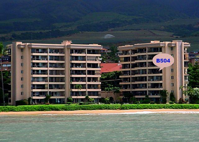 B504 - B504 Hololani Oceanfront Resort - Lahaina - rentals