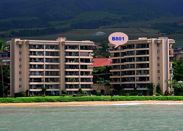 B801 - B801 Hololani Oceanfront Resort - Lahaina - rentals