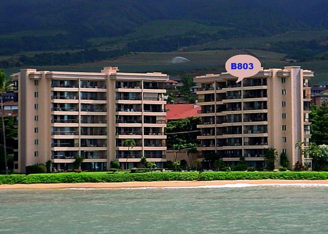 B803 Location - B803 Hololani Oceanfront Resort - Lahaina - rentals