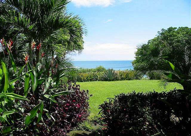 Patio View - Stunning beachfront condo- custom kitchen, a/c, patio, cable, internet - Tamarindo - rentals