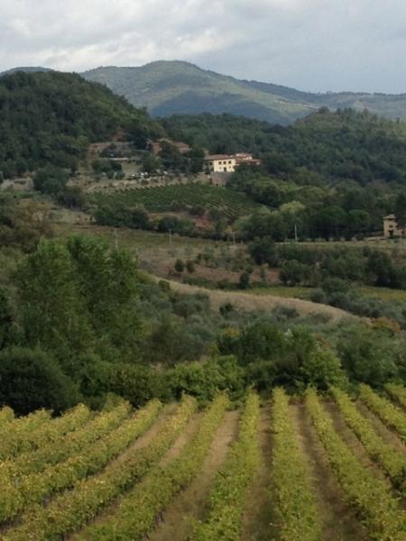 Tuscany Villa Rental near Greve - Antonietta - Image 1 - Greve in Chianti - rentals