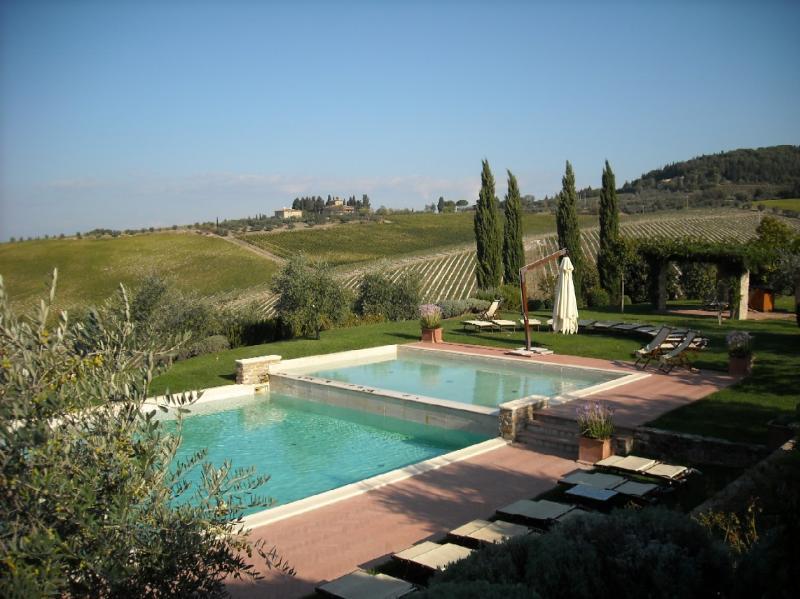 Apartment Rental in Tuscany, Montefiridolfi - Bianco 7 - Image 1 - Montefiridolfi - rentals