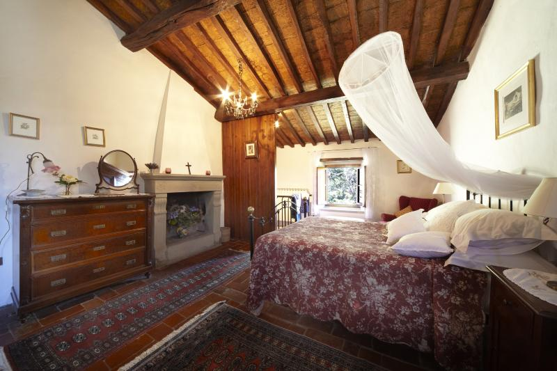 Tuscany Villa Near Florence - Casale Olmo - Image 1 - Londa - rentals