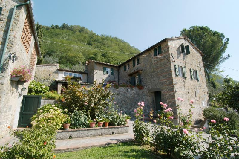 Accommodation near Lucca  - L'Asilo 2 - Image 1 - Lucca - rentals