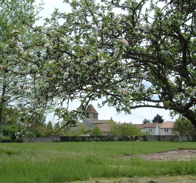 Lovingly Restored France Villa in Aquitaine - La Ferme de la Dronne - Silver Truffle - Image 1 - Chenaud - rentals