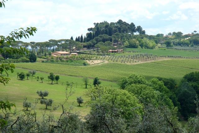 Holiday Accommodation in Italy - Villa Appia - Image 1 - Magliano Sabina - rentals