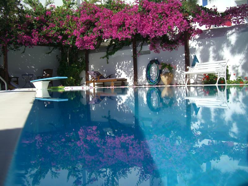 Paros Villa Rental in the Picturesque Village of Naoussa  - Villa Naoussa - Image 1 - Naoussa - rentals
