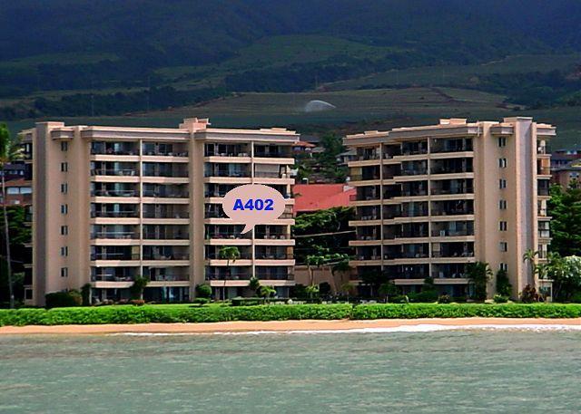 A402 Hololani Oceanfront Resort - Image 1 - Lahaina - rentals