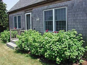 Great House in Nantucket (7422) - Image 1 - Nantucket - rentals