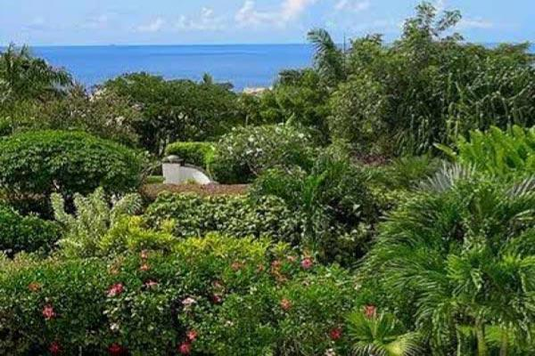 Ocean view villa with separate cottage. AA EDN - Image 1 - Barbados - rentals