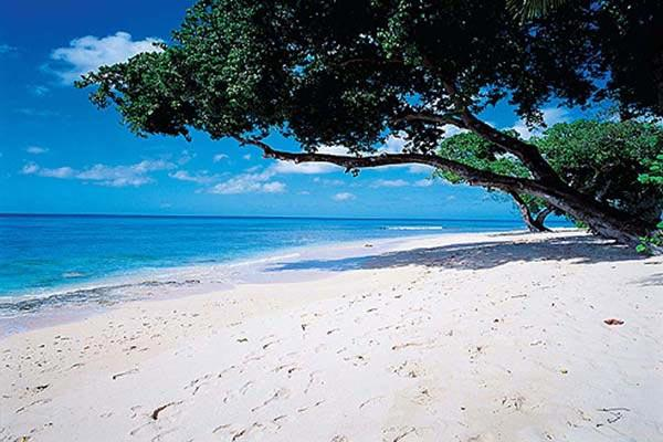 Luxury townhouse on Mahogany Bay. BS CHA - Image 1 - Barbados - rentals