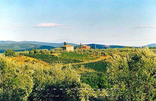 Casa San Vito atop rolling Chianti hills - Perfect Tuscany Chianti Vineyard Villa-Great Views-Visit Wineries-Casa San Vito - San Casciano in Val di Pesa - rentals