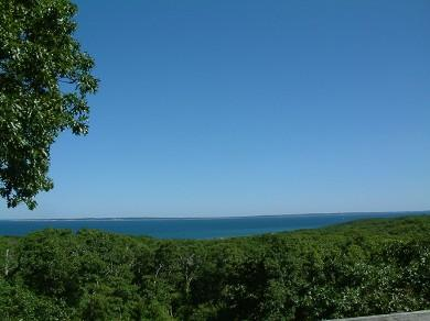 1167 - CHARMING HOME W/VIEWS OF VINEYARD SOUND & ELIZABETH ISLANDS - Image 1 - Chilmark - rentals
