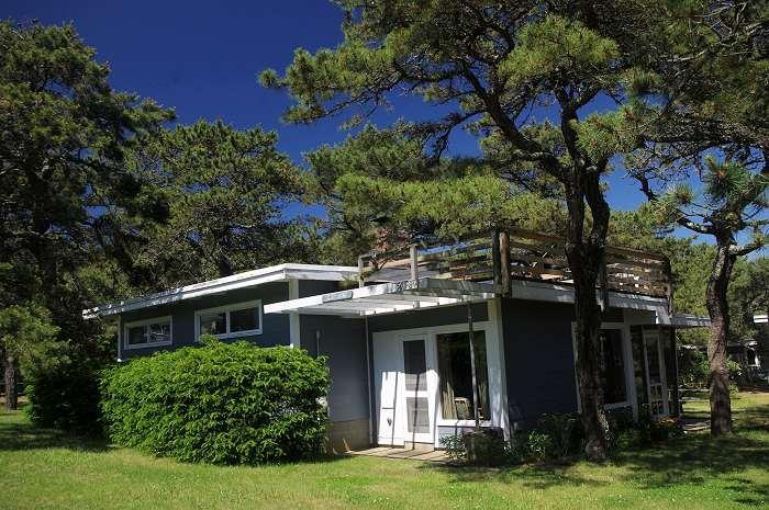 Surf King - Surf King Cottage at Surf Side - Roof-top Deck - Wellfleet - rentals