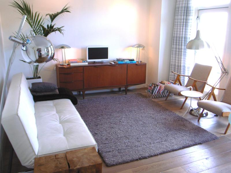 spacious living with balcony - Linnaeussuite: award winning apt with roofterrace - Amsterdam - rentals