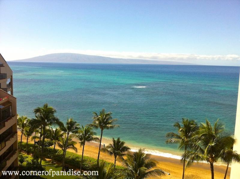 Lanai View - Valley Isle Resort #1101 - Oceanview Corner Unit - Lahaina - rentals