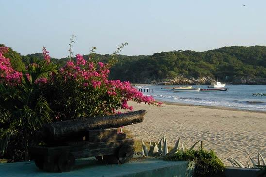 Blue Marlin Villa: Perfect Family/Friends Respite - Image 1 - Treasure Beach - rentals