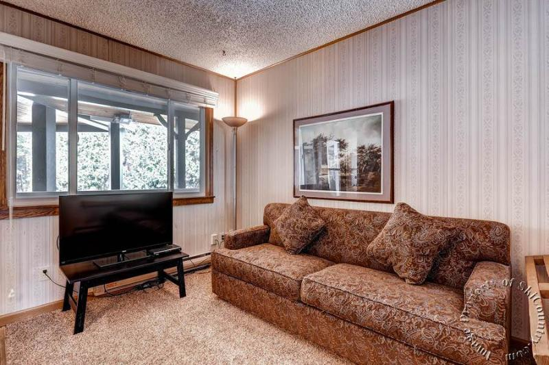 Park Meadows Lodge 5B by Ski Country Resorts - Image 1 - Breckenridge - rentals