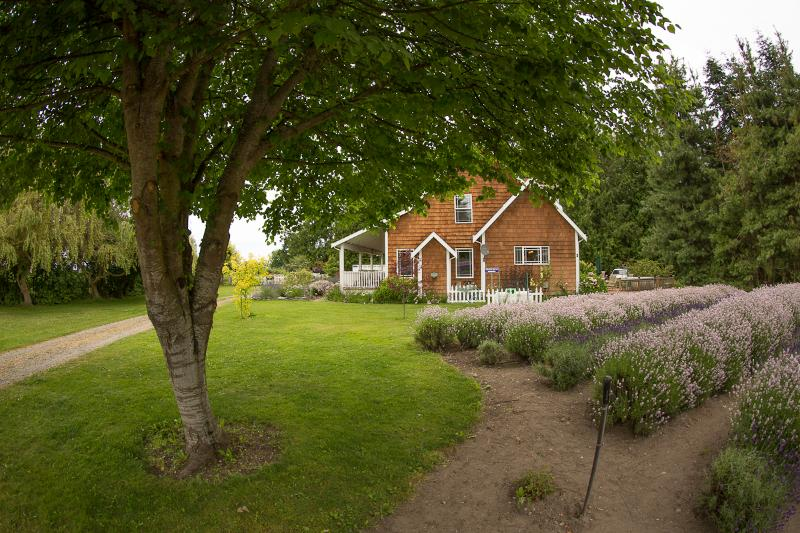 Farmhouse - Purple Haze Lavender Farmhouse Vacation Rental - Sequim - rentals
