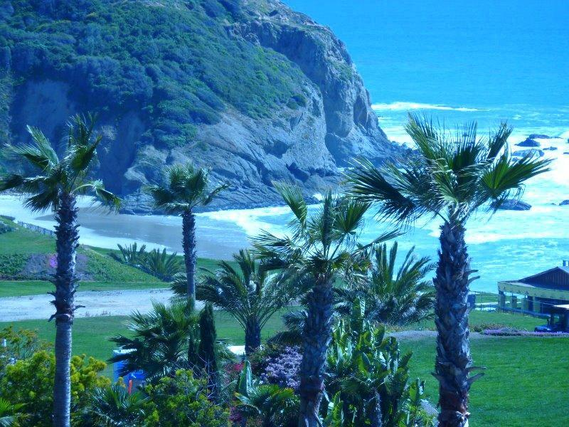Strand Beach. . .only steps from condo - Cleopatra. . Panoramic Ocean View   Open - Dana Point - rentals