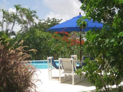 Carolita 1 Bed with Pool Nr Holetown - Image 1 - Holetown - rentals
