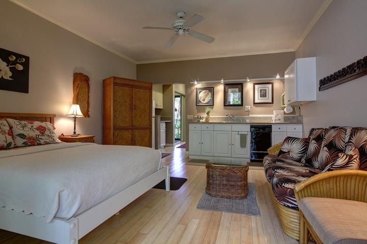 Spacious, beautifully furnished studio - WAILEA SPACIOUS KING STUDIO - NEXT AVAIL:  APR 12-14; 19-21   $115/NT - Wailea - rentals