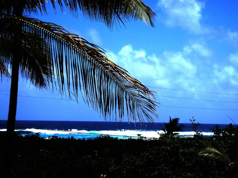 Beautiful view from the Pualani Vacation rental in Kapoho, Hawaii - Ocean View Pualani, Bikes, Hot Tub, Snorkeling! - Pahoa - rentals