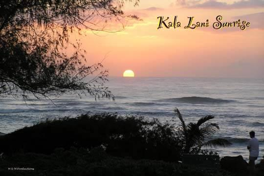 Kaha Lani Resort #107-Oceanview,2 BR,Washer/Dryer! - Image 1 - Kapaa - rentals
