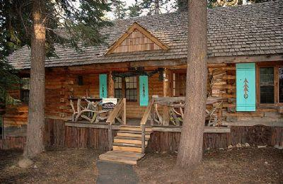 Lucky Tree Cabin *Well Behaved Dogs Welcome!* - Image 1 - Truckee - rentals
