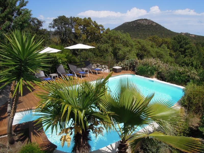The private pool heated secluded among the mediterranean nature. - Villa private pool heated nr beaches Santa Giulia - Porto-Vecchio - rentals