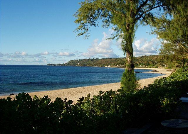 **SPECIAL 1/24 to 2/5 $195 per night ** - Image 1 - Haleiwa - rentals