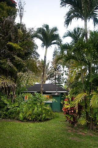 Idyll location - Garden Surf Cottage in Hanalei-a walk to the beach - Hanalei - rentals
