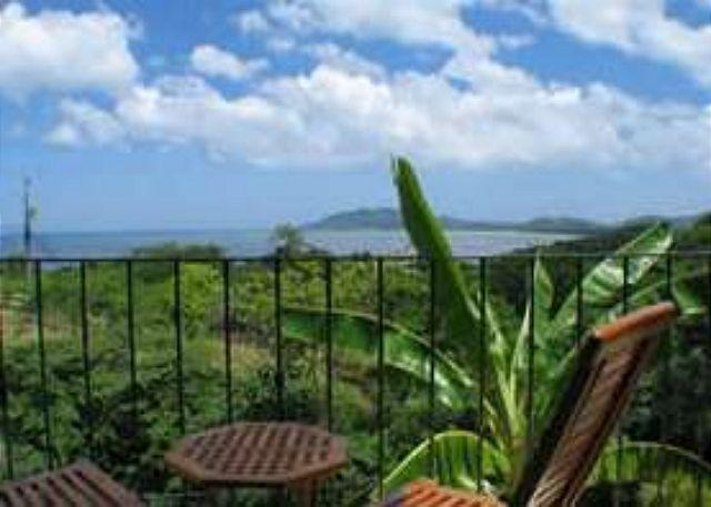 Terrace View - Cozy hillside condo oceanview, cable, kitchen, a/c, shared pool - Tamarindo - rentals