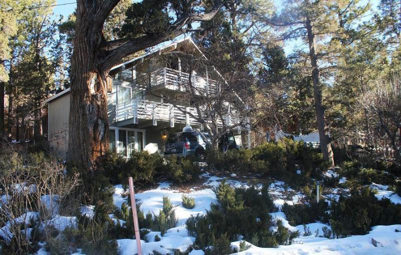 Absolute Comfort Chalet - Image 1 - City of Big Bear Lake - rentals