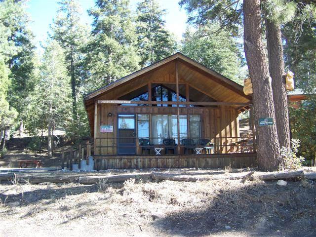 Bear Cub - Image 1 - Big Bear Lake - rentals