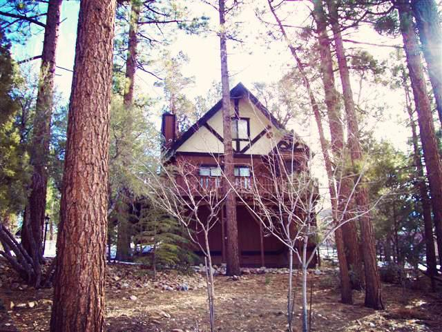 Wishing Bear Lodge - Image 1 - Big Bear City - rentals
