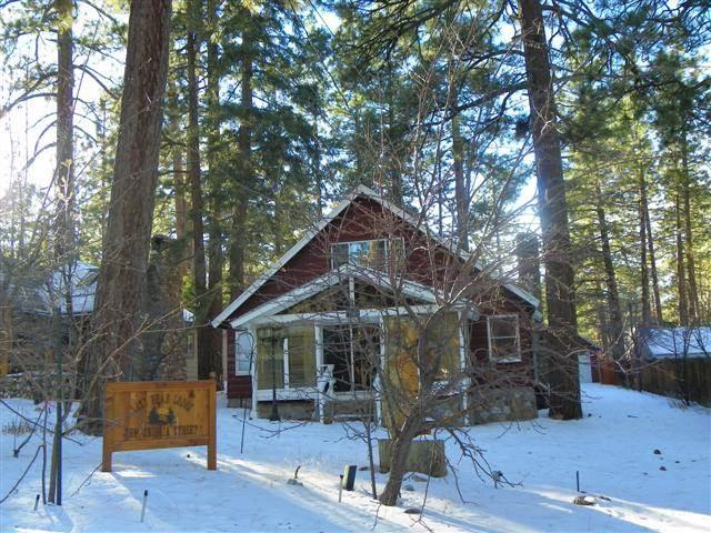 The Lazy Lazy Bear Lodge - Image 1 - Big Bear Lake - rentals