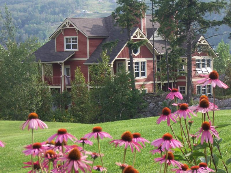 Condo on the golf course le Geant - Tremblant - ski / golf condo with spectacular view - Mont Tremblant - rentals