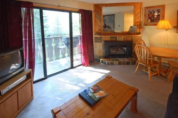 Scandinavian Lodge and Condominiums - SL201 - Image 1 - Steamboat Springs - rentals