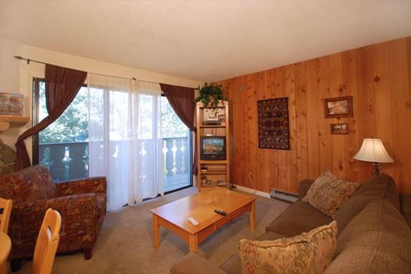 Scandinavian Lodge and Condominiums - SL208 - Image 1 - Steamboat Springs - rentals