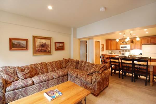 Scandinavian Lodge and Condominiums - SL301 - Image 1 - Steamboat Springs - rentals