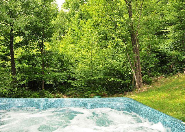 Hot Tub - Cozy Bear Chalet - McHenry - rentals