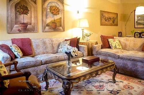 Pasquino living room - Perfect Rome Navona-Wash/Dryer-Luxury Pasquino - Rome - rentals