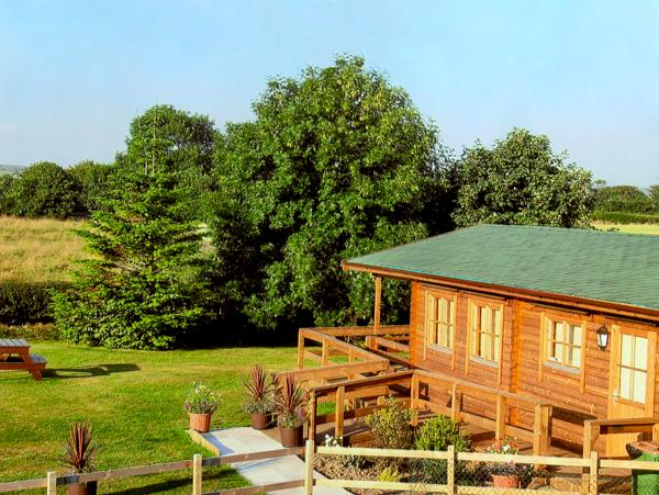 THORNLEA LOG CABIN, pet friendly, country holiday cottage, with a garden in Danby, Ref 1490 - Image 1 - Danby - rentals