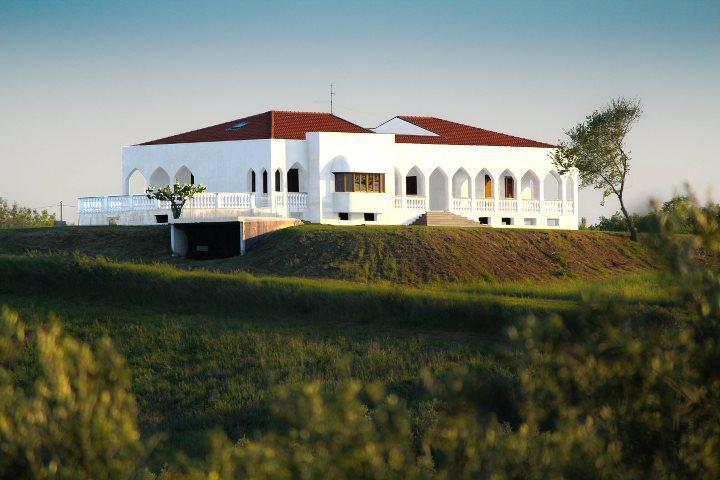 Villa sits on a hill with breathtaking view - Award-winning Villa on Adriatic Coast, Abruzzo - Pescara - rentals
