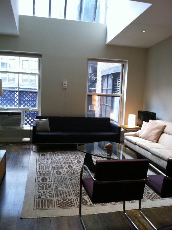 Living - Huge Flatiron/Union Sq 3 Bedroom, 2 B Loft for 1-8 - New York City - rentals